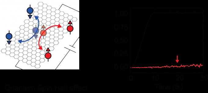 양자화된 스핀 홀 전도도에 대한 모식도를 나타냈다. 전기를 흘려주면 스핀 방향이 같은 전자끼리 나란히 정렬하게 된다. 이때 스핀들이 이동하는 스핀 홀 전도도가 측정된다. UNIST 제공