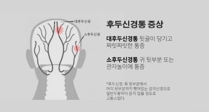 후두신경이 뻗어 있는 모습. aneskey.com 제공