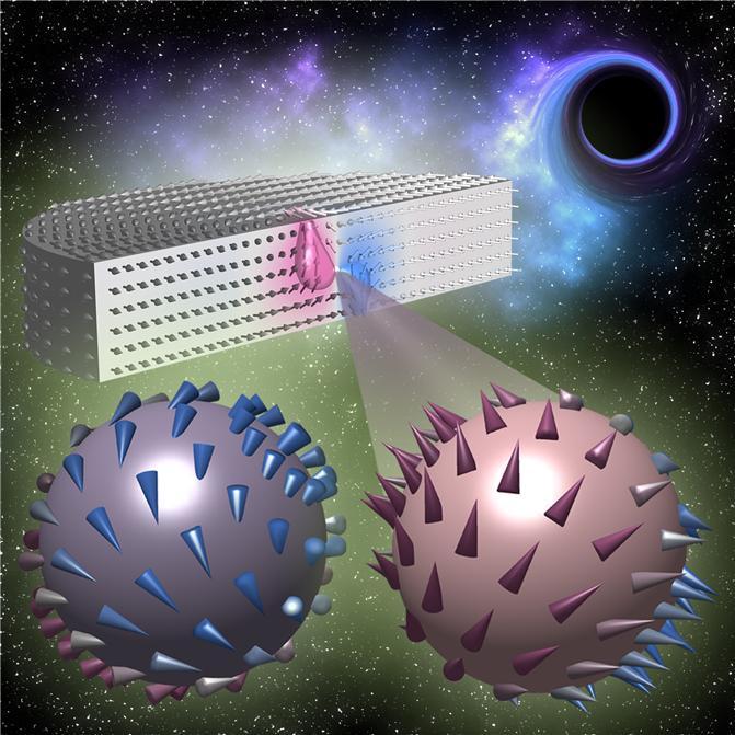 韓美연구진, 신 총장 논란 X선 현미경 활용해 '블로흐 점' 최초 관측 성공