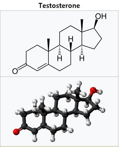 남성호르몬 테스토스테론은 경기력에 큰 영향을 주기 때문에 도핑검사 항목이다. 몸이 만드는 '천연' 테스토스테론과 합성 테스토스테론은 동위원소 비율이 달라 구분할 수 있다. 테스토스테론의 분자구조. 위키피디아 제공