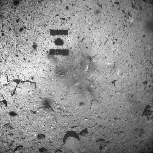 일본항공우주연구개발기구(JAXA)는 하야부사2가 이달 22일 소행성 류구에 터치다운한 직후 촬영한 사진을 공개했다. JAXA 제공