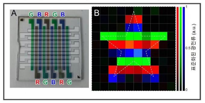 정대성 대구경북과학기술원(DGIST) 에너지공학전공 교수 연구팀이 컬러필터를 뺀 이미지 센서 시제품을 제작했다. 휘어지는 웨어러블 소자에 적용이 가능할 것으로 예상된다. 한국연구재단 제공