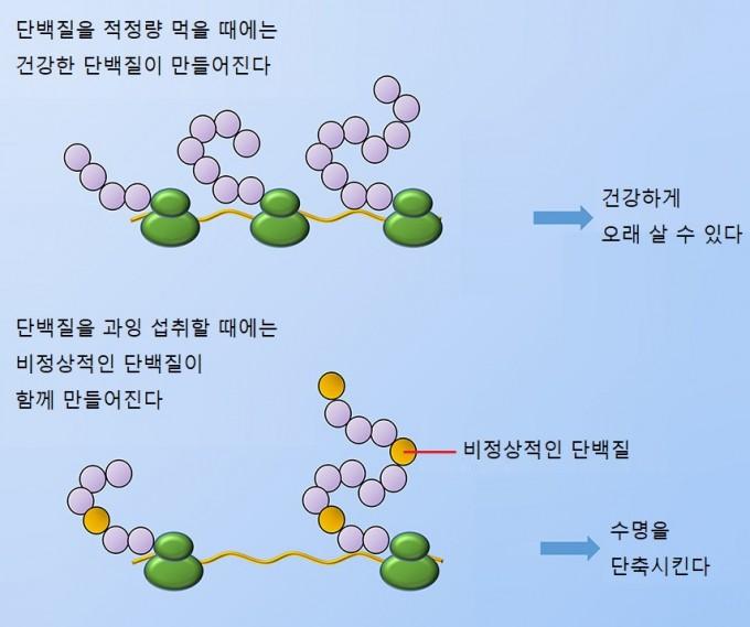 동아사이언스(자료: Current Biology)