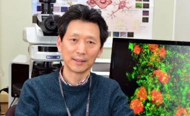 """KIST 단장에 류훈 보스턴 의대 교수 영입 """"역중개 연구로 뇌질병 원인 밝힐 것"""""""