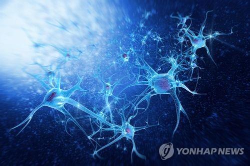 '불면의 밤' 보내면 뇌에 무슨 일이?
