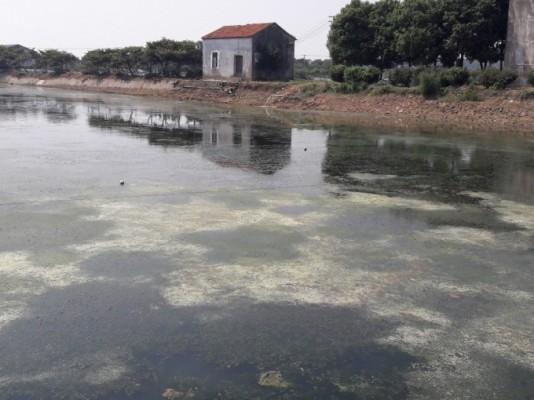 中 '민물 양식장' 지구온난화 부채질