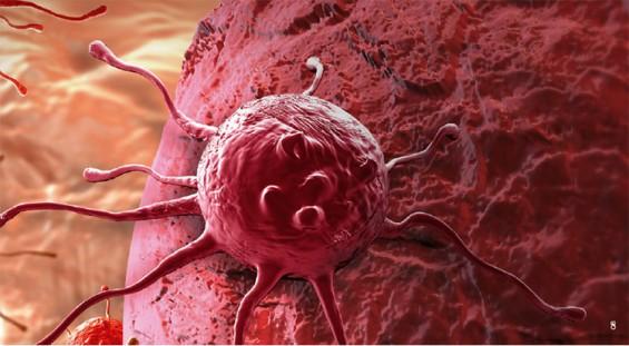 특정 암 환자에게만 효과 내는 표적치료제도 특허받는다