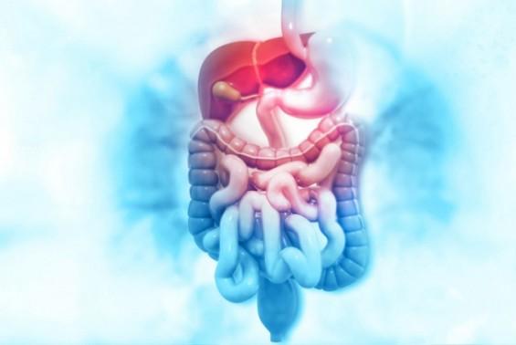 대장암 진단받은 알코올 간질환 환자, 간암 발병 위험