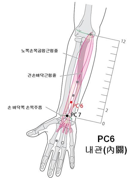 한국한의학연구원 제공