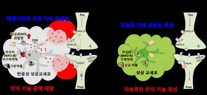 기존 마오비 억제제는 대체 효소가 형성돼 효과가 금세 사라지는 단점이 있었다(왼쪽). 연구팀이 개발한 새 후보약물은 효과가 오래 지속된다. 사진 제공 KIST