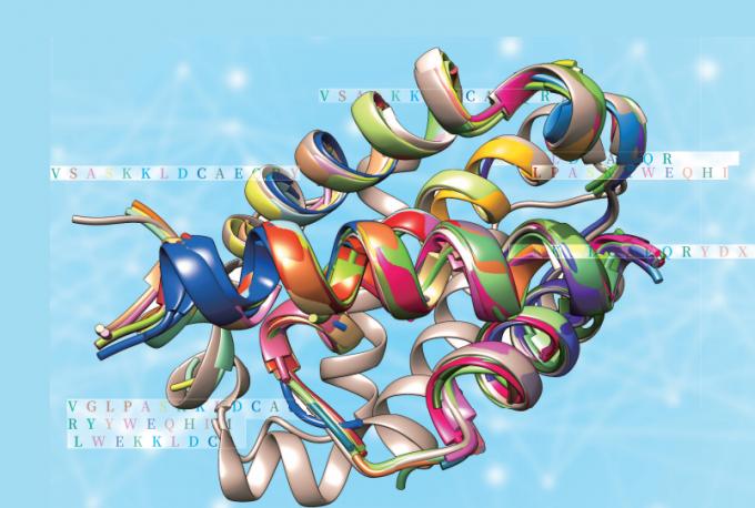 아미노산 서열만으로 단백질의 3차원 구조를 예측하는 컴퓨팅 기술이 진화하고 있다. 사진은 에이미 키팅 미국 매사추세츠공대(MIT) 생물학과 교수팀이 시뮬레이션한 3차원 단백질 구조다. 동아사이언스