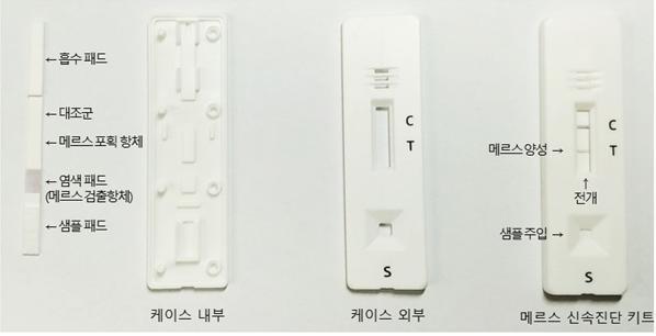 한국화학연구원이 개발해 ′휄스바이오′에 기술이전한 메르스 신속진단키트의 구조를 보였다. 사진 제공 한국화학연구원