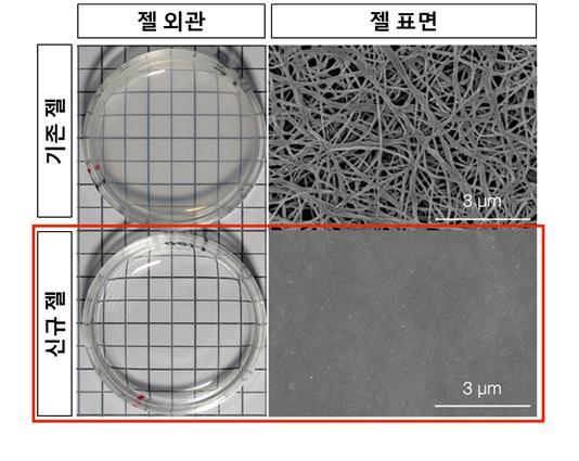 현재 주로 사용되고 있는 콜라겐 젤(위). 표면에 콜라겐 섬유를 볼 수 있다. 아래는 이번 연구에서 제작한 콜라겐 젤. 아래가 비칠 정도로 투명하다. 사진제공 한국뇌연구원