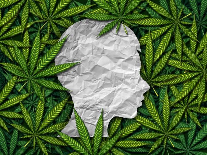 대마를 매일 사용하면 정신질환 발병 위험이 3배나 증가한다는 연구 결과가 나왔다. 게티이미지뱅크 제공