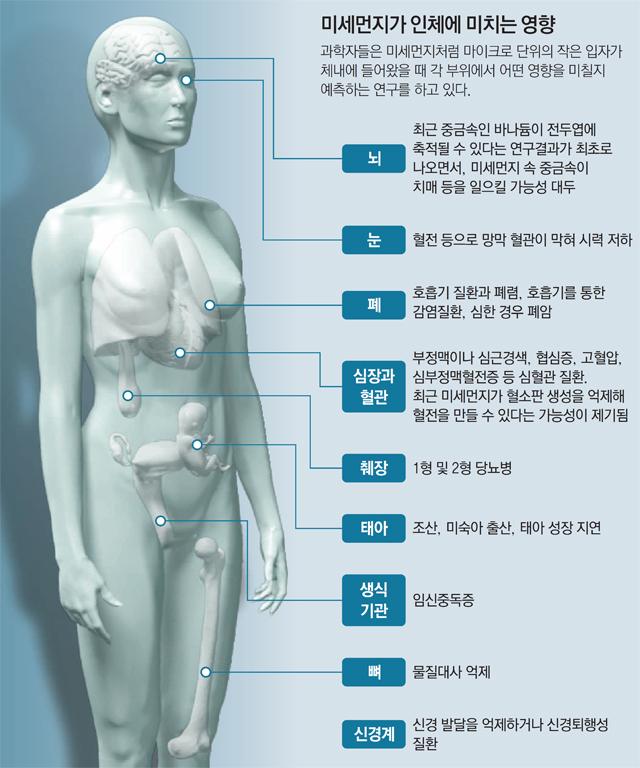 사진 제공 동아일보
