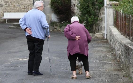 노화로 인한 퇴행성관절염 발병메커니즘 찾았다