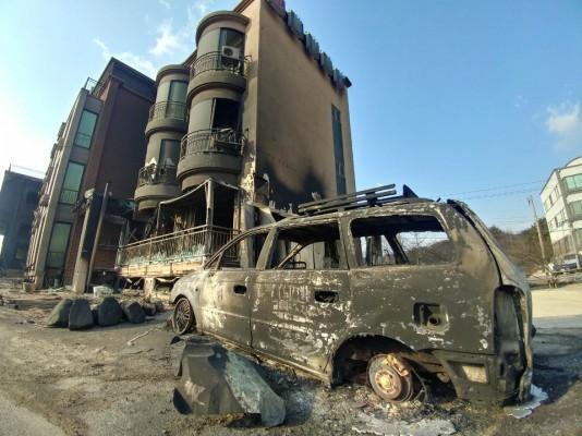 산불 피해 전 세계적으로 점점 커진다…지역 가리지 않고 발생