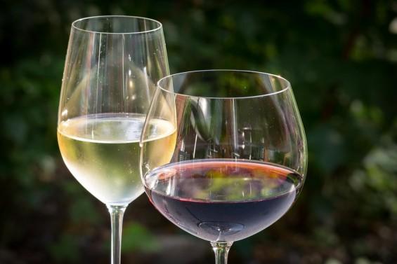 화성産 첫 와인은 화이트 와인