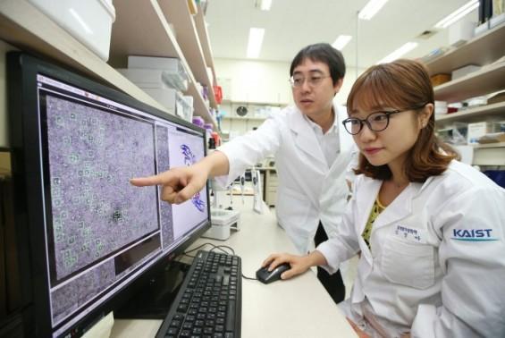 KAIST 빛낸 연구성과에 신개념 양자컴퓨터·투명 터치센서 선정