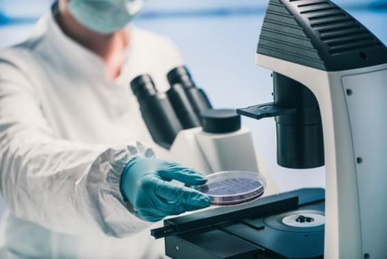 항생제에 강해지는 한강의 세균들…내성 유전자 최소 300종 확인