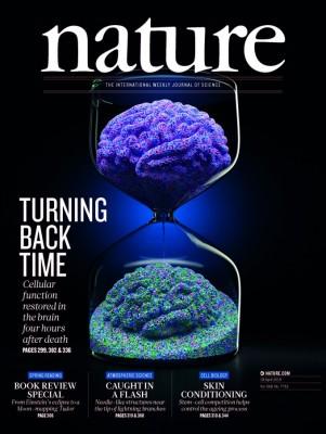 [표지로 읽는 과학] 죽은 뇌세포를 되살리다