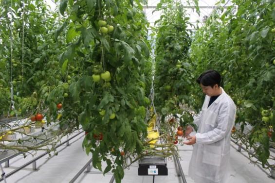 농업에 블록체인·드론·위성 도입 확대한다