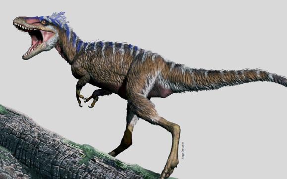 티라노사우루스의 친척 종으로 추정되는 공룡 화석의 생존 모습을 복원한 그림. 몸집이 염소처럼 작고 깃털이 있다. Jorge Gonzalez