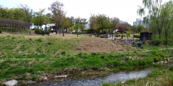 천변 산책로에서 바라본 삼덕공원의 전경이다. 사진 왼쪽에 보이는 기념 타워(실물 1/3 크기인 굴뚝 조형물)만이 이곳이 한때 제지공장이었음을 상징하고 있다. 강석기 제공