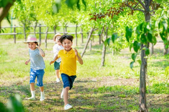 어린시절 녹지의 경험은 성인의 정신질환에 영향을 미친다. 게티이미지뱅크