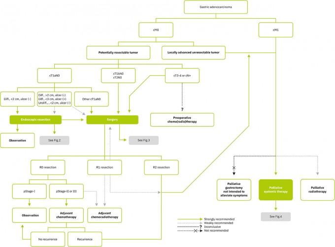 위암 치료 가이드라인에 나오는 치료 알고리즘의 한 예. 대한위암학회 제공