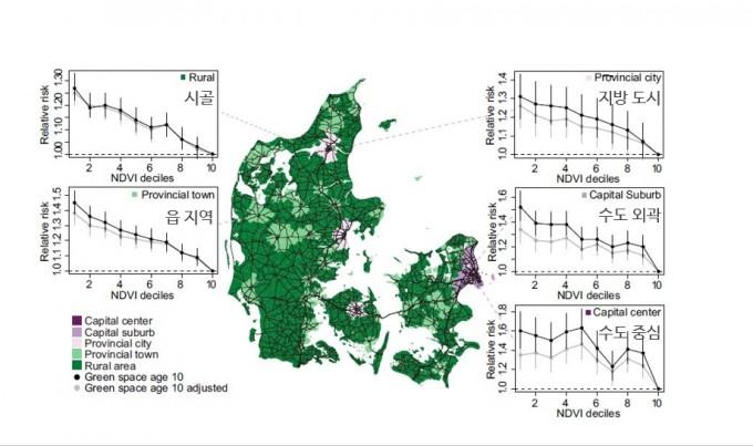 덴마크 사람들을 대상으로 열 살 때 살던 집의 녹지지수(NDVI. 1분위는 녹지 비율이 가장 낮고 10분위는 가장 높다)와 청소년 이후 정신질환 발생의 상대적 위험성(relative risk)을 거주지의 도시화 정도에 따라 분석한 자료다. 시골(rural)에 살면 어릴 때 녹지지수에 따른 위험성 차이가 적지만 읍(provincial town), 지방 도시(provincial city), 코펜하겐 외곽(capital suburb), 코펜하겐 중심(capital center)으로 갈수록 차이가 커지는 경향이 있다. 도심일수록 녹지 확보가 더 절실한 이유다. 검은색은 보정 전, 회색은 다른 요인들을 보정한 뒤의 값이다. '미국립과학원회보' 제공
