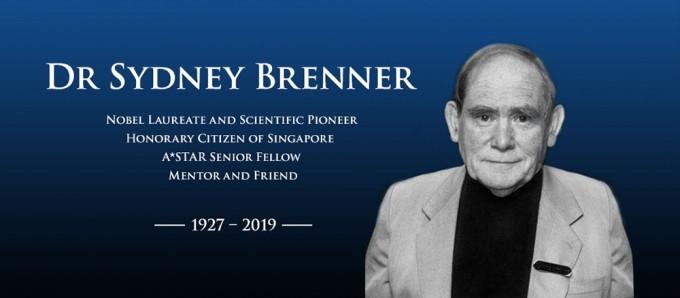 분자생물학의 기틀을 세운 선구자이자 예쁜꼬마선충 연구의 제안자자 시드니 브레너 박사가 5일 타계했다. 사진제공 싱가포르 과학기술처
