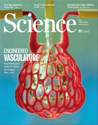 [표지로 읽는 과학] 식품첨가제로 만든 3D프린팅 인공장기