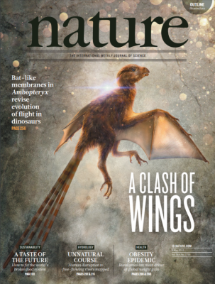 [표지로 읽는 과학] 새 깃털 입고 박쥐처럼 날아다닌 암보프테릭스