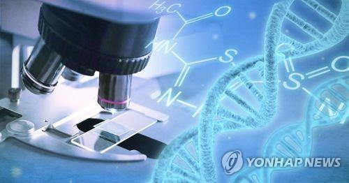 美특허 출원 1위 대학은 카이스트…분야는 생명공학