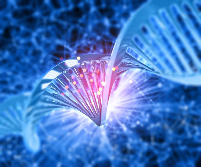 한국생명공학연구원 연구팀이 최근 미생물에서 발견한 단백질 ′UdgX′가 염기 수준에서 돌연변이를 찾아 없애는 효소 중 하나이며 특정 염기를 인식해 공유결합한다는 사실을 알아냈다. 게티이미지뱅크 제공