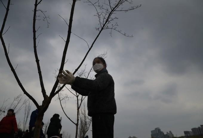 ′제74회 식목일 기념 나무심기 행사′에 참가한 한 어린이가 마스크를 쓰고 나무를 심고 있다. 연합뉴스 제공