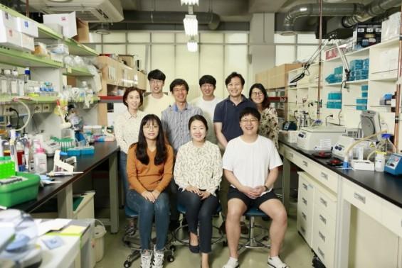 염색체가 '스토커 단백질' 만나면 암 걸린다