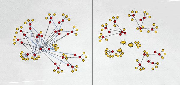 복잡하게 연결된 조직 망의 일부만 끊음으로써 정보가 전체로 퍼지는 것을 막을 수 있다.Jonathan Farley