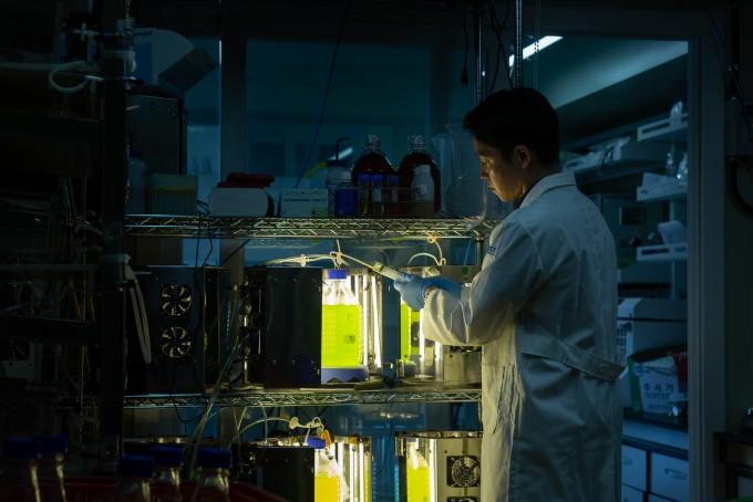 광생물 반응기를이용해미세조류 연속 대량생산 기술을개발해 실험 중이다. 하나의 개체로 다양한 효과를 내는 미세조류는 이를 통해배양용량이 1.5배 늘어났다. 남윤중 제공