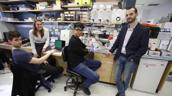 샘 스탠버그 미국 컬럼비아대 생화학및분자생물물리학과 교수(맨 오른쪽)가 이끄는 연구팀이 콜레라균에서 아이디어를 얻어 DNA를 자르지 않고도 원하는 부분에 유전자를 삽입할 수 있는 신기술을 개발했다. 컬럼비아대 제공