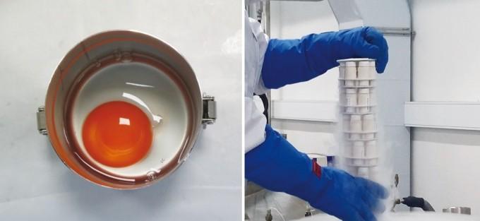 괭이갈매기 알이 환경시료가 되기까지의 과정. 상하지 않게 운반된 알은 껍데기 표면의 오염물질을 제거한 후 메스로 절개해 알 내용물을 빼낸 후 냉동시킨다. 냉동된 알을 분쇄기를 이용해 알갱이로 만든 후 초저온 저장탱크에 보관한다. 국립환경과학원 제공