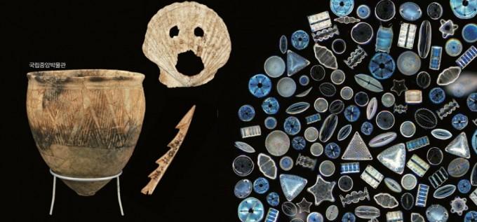 패총에서는 어류는 물론 유물도 발견된다. 부산 동삼동 패총 유적에서는 조개로 만든 얼굴, 낚시 바늘, 덧무늬 토기 등 다채로운 유물이 확인되었다. 국립중앙박물관 제공