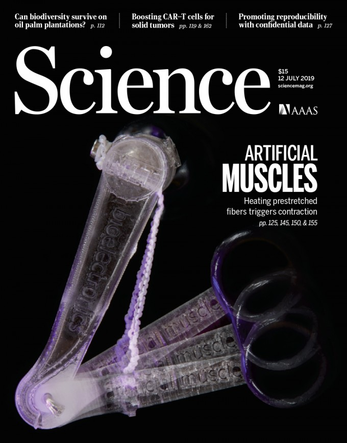 [표지로 읽는 과학]값싸고,국수처럼 쉽게 뽑는 인공근육 전성시대