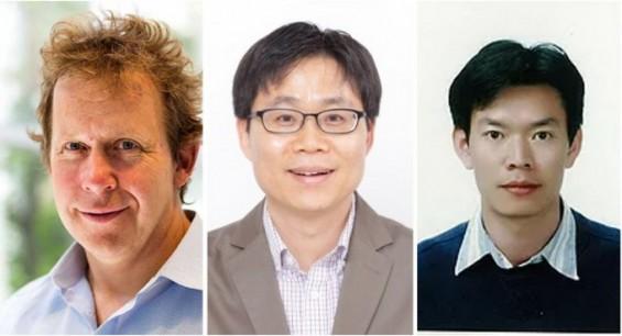 韓美연구팀, 휘어지고 늘어나도 성능 안 떨어지는 배터리 개발