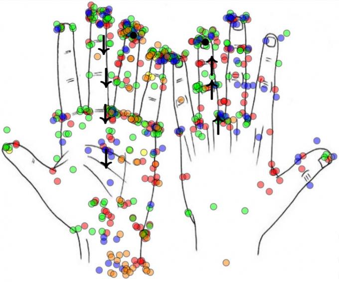 유타대 연구팀이 개발한 데카루크 암이 실제로 느낄 수 있는 감각들을 동그라미로 나타냈다. 데카루크 암을 끼고 느낄 수 있는 감각이 119가지나 된다. 대부분 진동(빨간색, 37%)과 압박(녹색, 29%)이며 고통(파란색)이나 조임(오렌지색), 두드림(노란색), 바람처럼 윙윙거림(검은색)도 느낄 수 있다. 검은색 화살표는 척골신경과 정중신경에 심은 전극을 통해 자극이 전해지는 길이다. 사이언스 로보틱스 제공
