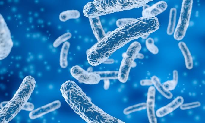 신생아 때의 장내미생물 조성을 보면 유아 때 알레르기와 천식이 발생하는지 미리 알 수 있다는 사실이 밝혀졌다. 이를 통해 알레르기와 천식을 예방하는 방법을 찾을 수 있을 전망이다. 게티이미지뱅크 제공