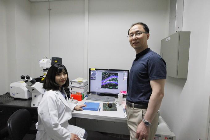 연구를 이끈 유성운 DGIST 뇌·인지과학전공 교수(오늘쪽)과 제1저자 정성희 연구원. 사진제공 DGIST
