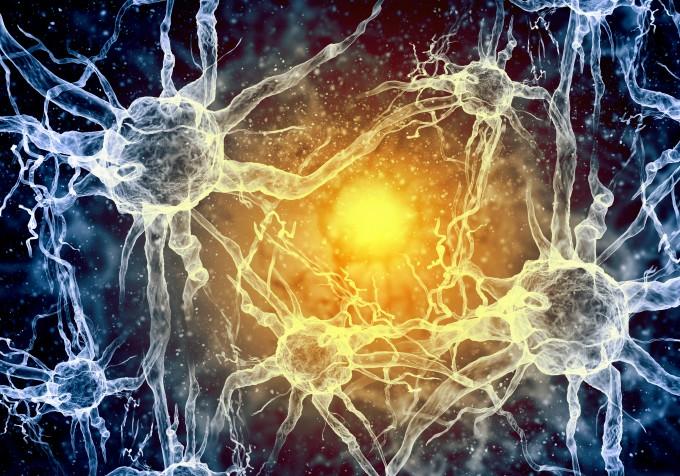 독일 뒤셀도르프대 연구팀은 실험을 통해 인간 내생 바이러스 유전자가 다발성경화증과 근위축성측색경화증, 조현병 등의 발병과 진행에 관여하고 있다는 사실을 실험으로 알아냈다. 연구팀은 평소 건강할 때에는 인간 내생 바이러스 유전자가 과도하게 발현되지 않지만 염증반응이나 돌연변이, 약물 등 환경적인 요인에 의해 과도 발현하거나, 인간 내생 바이러스 유래 단백질이 활성화하면서 세 질환을 일으키는 것으로 보고 있다. 게티이미지뱅크 제공