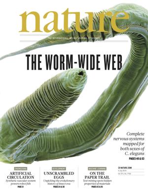 [표지로 읽는 과학]벌레 신경세포의 연결망 'WWW'